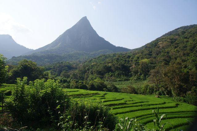 Voyage De la péninsule de Jaffna aux monts Knuckles