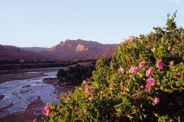 Circuit Maroc - Randonnées Atlas - Randonnée Vallée des Roses - Voyage  Marrakech - 8 jours