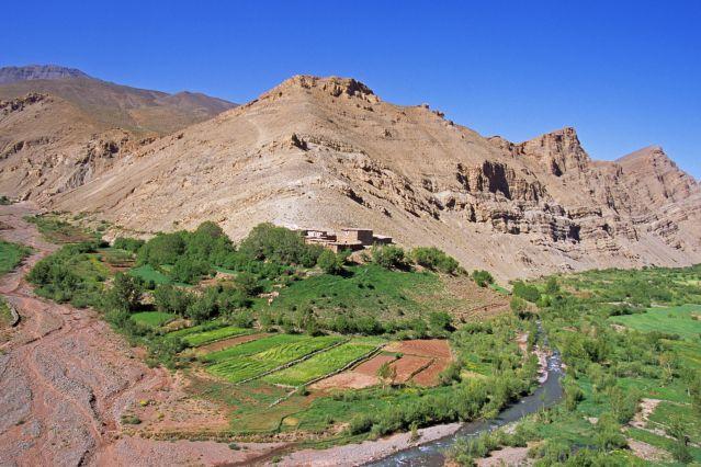Tessaout - Haut Atlas - Maroc