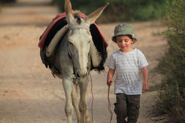 Voyage Des Berbères de l'Atlas à Essaouira
