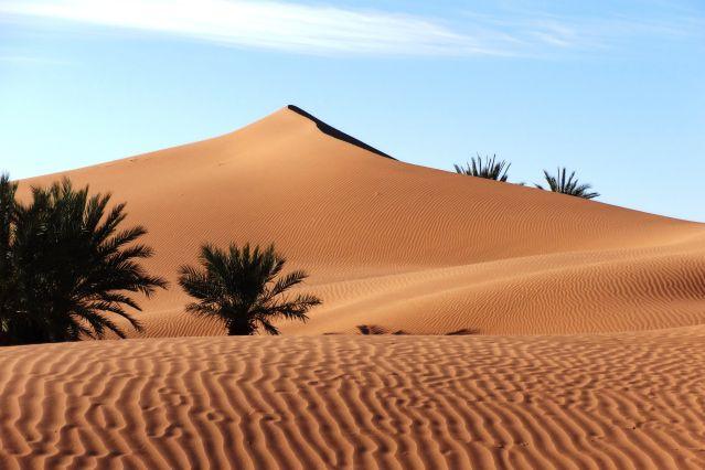 Voyage Echappée saharienne
