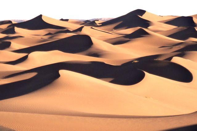 Dunes de la vallée du Drâa - Maroc