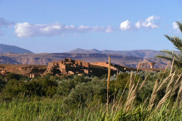 Voyage Oasis de l'Atlas et roses du M'Goun