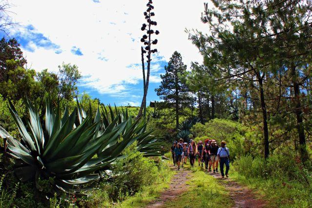 Voyage Treks des volcans à la sierra mexicaine