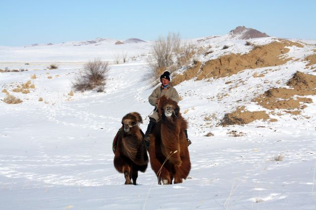 La Mongolie En Hiver Du D 233 Sert De Gobi 224 La Vall 233 E De L