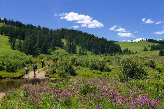 Parc national de Terelj - Mongolie