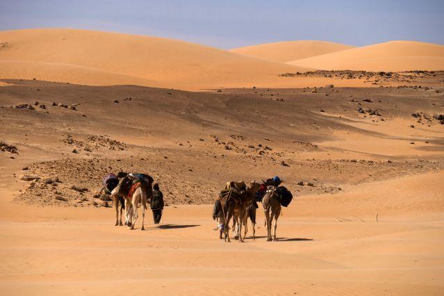 Voyage sur mesure Mauritanie - Randonnée Vallée Blanche - Trek ... bc8e3265e8a