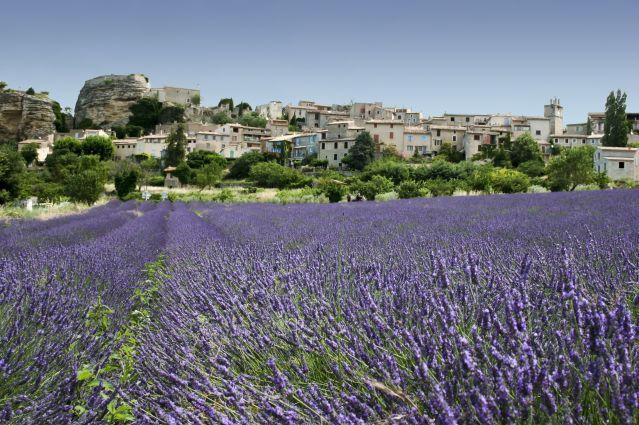 Voyage La ViaRhôna, en vélo et bateau de Lyon à Arles