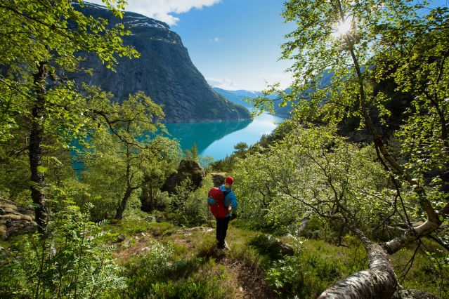 Ringedalsvannet - Tyssedal - Norvège