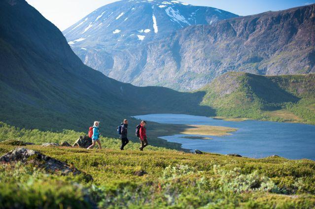 Valdresflye - Jotunheimen - Oppland - Norvège