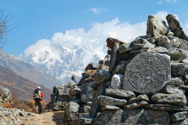 Langtang - Himalaya - Népal
