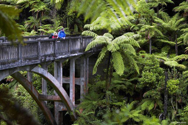 Le Bridge to Nowhere dans le parc national de Whanganui - Nouvelle Zélande
