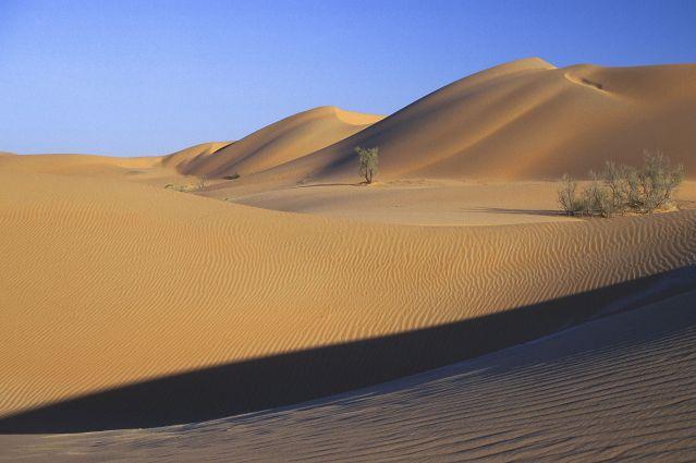 Voyage Oman : de l'eau, du sable et des hommes