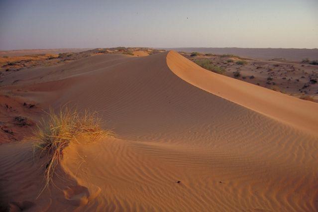 Voyage Oman : kayak et désert