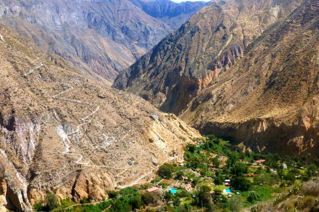 L Oasis de Sangalle dans le Canyon de Colca - Pérou