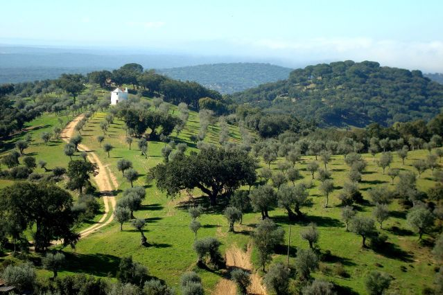 La région de l Alentejo - Portugal