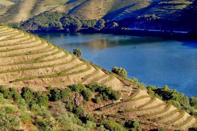 Voyage Porto et vignobles du fleuve d'or