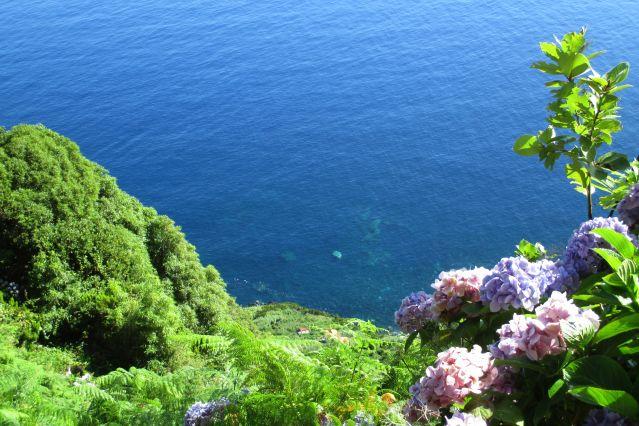 Faja do Mero - Sao Jorge - Açores - Portugal