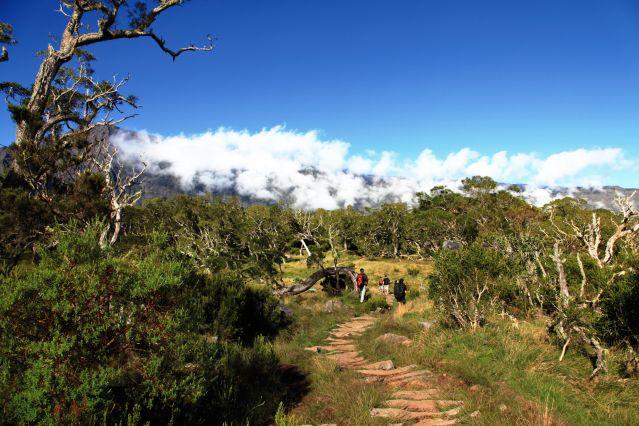 Voyage Randonnée sur l'île volcan