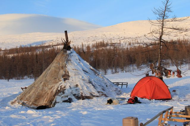 Campement du peuple Nenet dans la péninsule de Yamal - Russie
