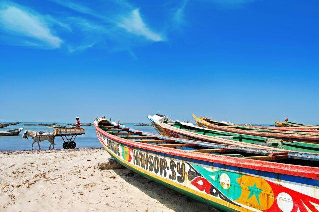 Voyage Terres marines du Sénégal