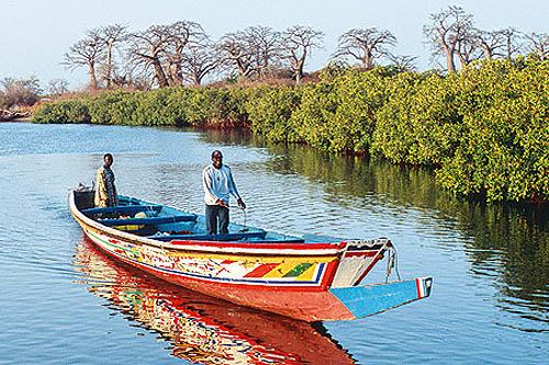 Découverte Senegal : Sénégal, hivernage dans le Siné Saloum