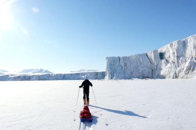 Voyage Sur les traces de l'ours