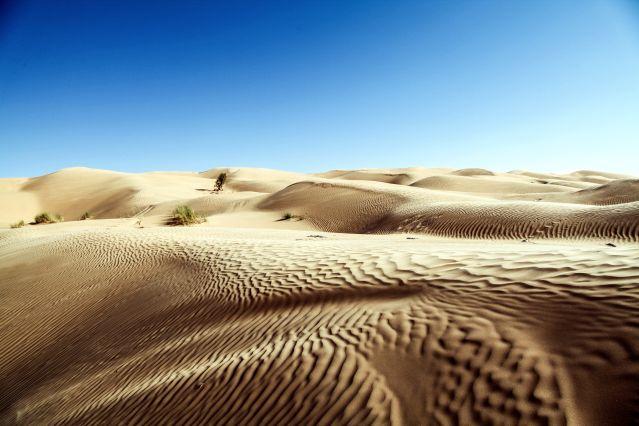 Au creux des dunes - Grand Erg Oriental - Tunisie