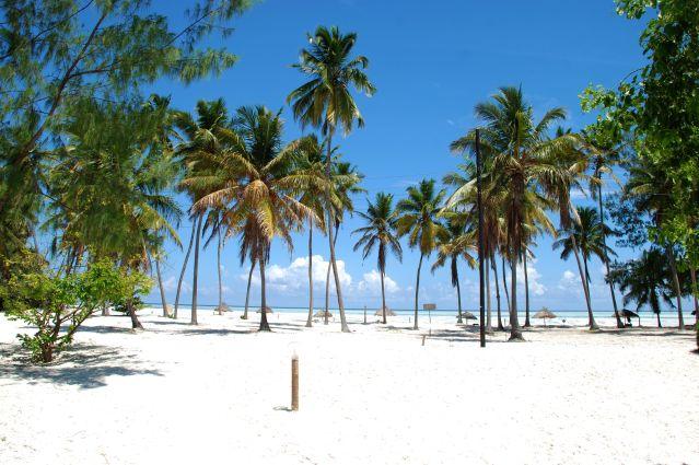 Plage près de Jambiani - Zanzibar