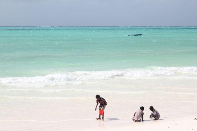 Plage de Zanzibar - Tanzanie