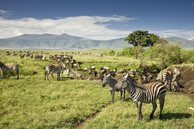 Voyage Escapade de charme tanzanienne