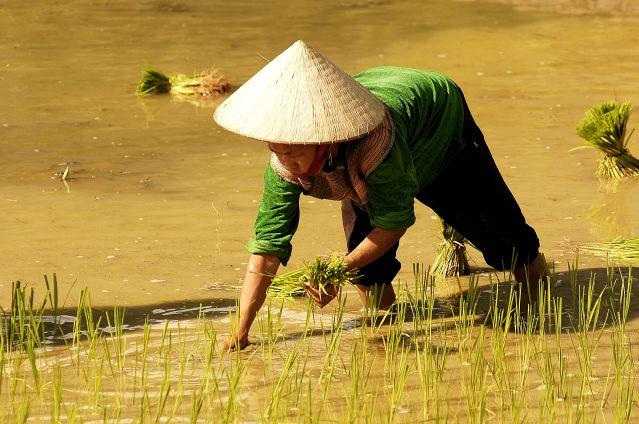 Voyage Mystérieuse baie d'Halong et sourires d'Angkor