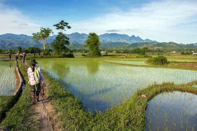 Voyage Immersion chez les ethnies du Tonkin