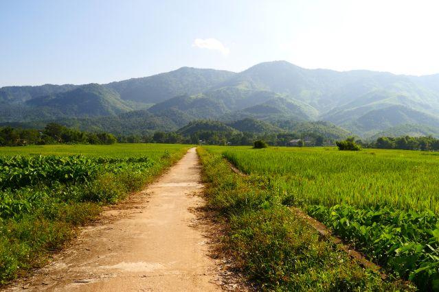 Entre Mai Hich et Pieng Ve - Vietnam