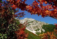 Les montagnes bavaroises, alpines et sportives