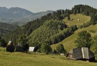 Des montagnes bulgares aux Carpates roumaines
