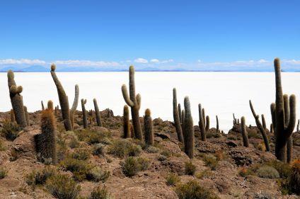 Du désert d'Atacama au salar d'Uyuni