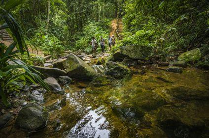 Route de l'or et Minas Gerais
