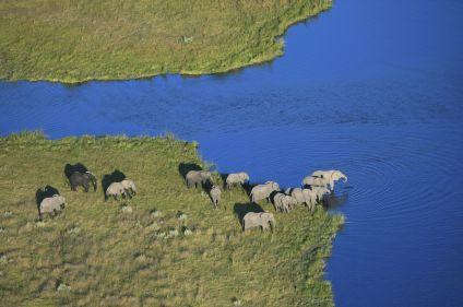 Botswana, rendez-vous en Terre africaine