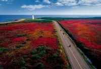 Nouveau-Brunswick et Gaspésie
