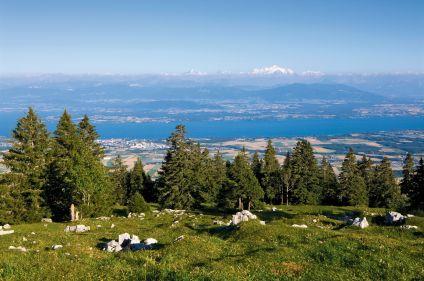 Ambiance nature et montagne, le Jura suisse en VTT