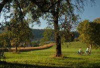 Lac de Constance et route du Rhin à vélo