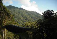 Costa Rica, coast to coast