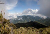 Treks de la forêt de nuages et du Corcovado