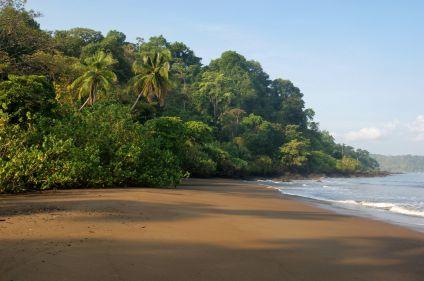Balade costaricaine, entre faune et flore