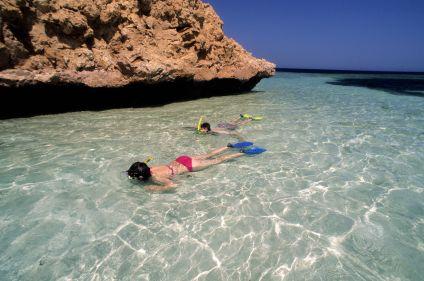 Snorkeling et dauphins de la mer Rouge