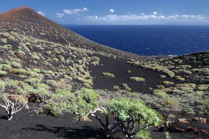 Volcans de Tenerife et de La Palma