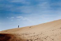 Les dunes de Fuerteventura