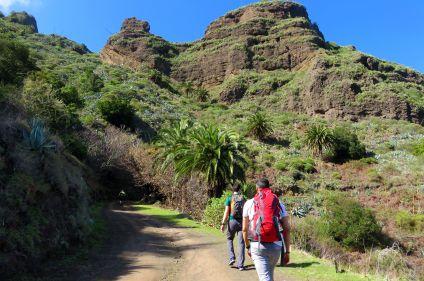 Monts et merveilles de La Gomera