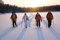 Raquette à travers la taïga finlandaise